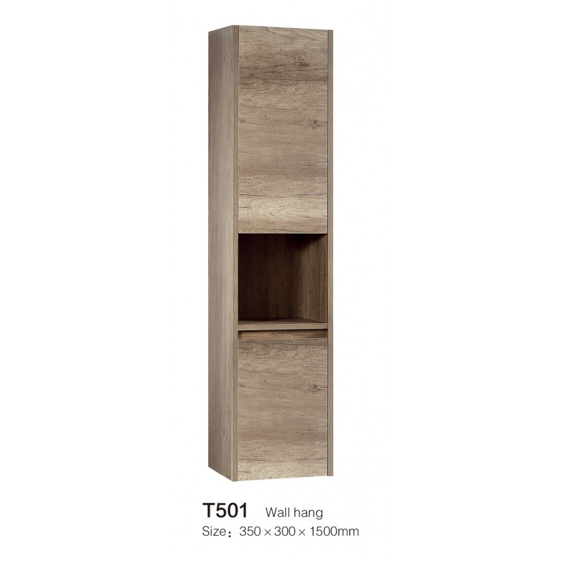 T501 Wall Hung Cabinet